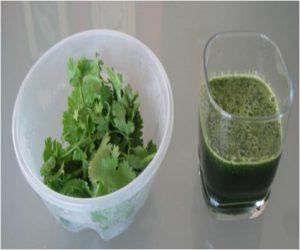 coriander-juice